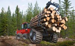 Третий Лесной форум форум пройдет в Кирове 28 и 29 июня