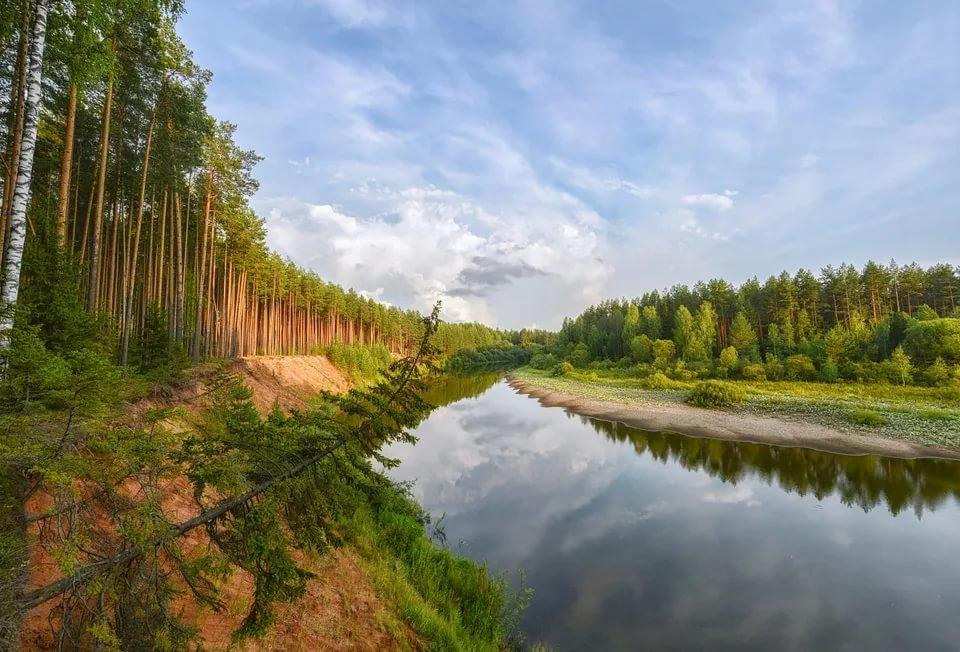 На охрану природы потратили около 3,5 млрд рублей
