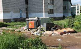 С приходом мусорной реформы стало еще грязнее