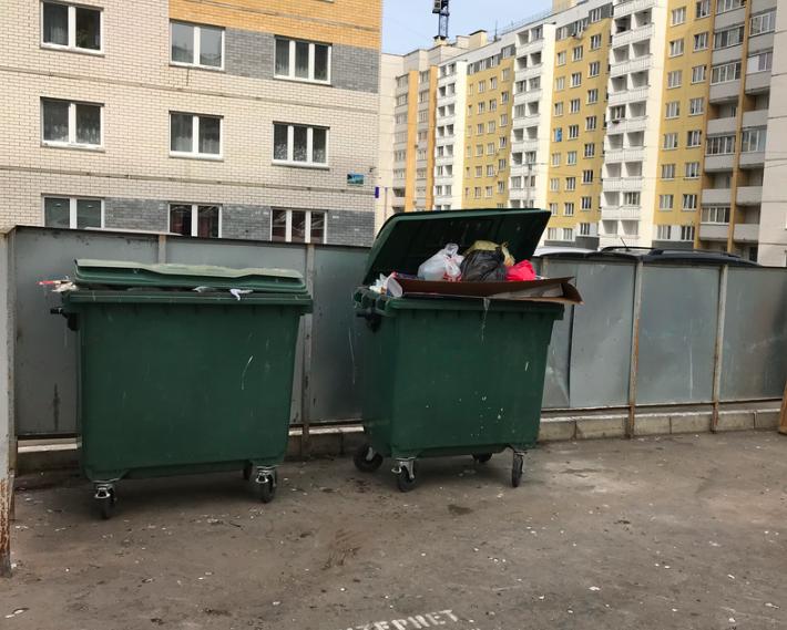 Мойка помойки. Кировчане не довольны состоянием контейнеров
