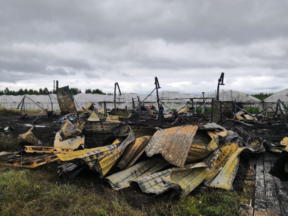 Трагедия в Шабалинском районе. Сгорели сотрудники теплицы