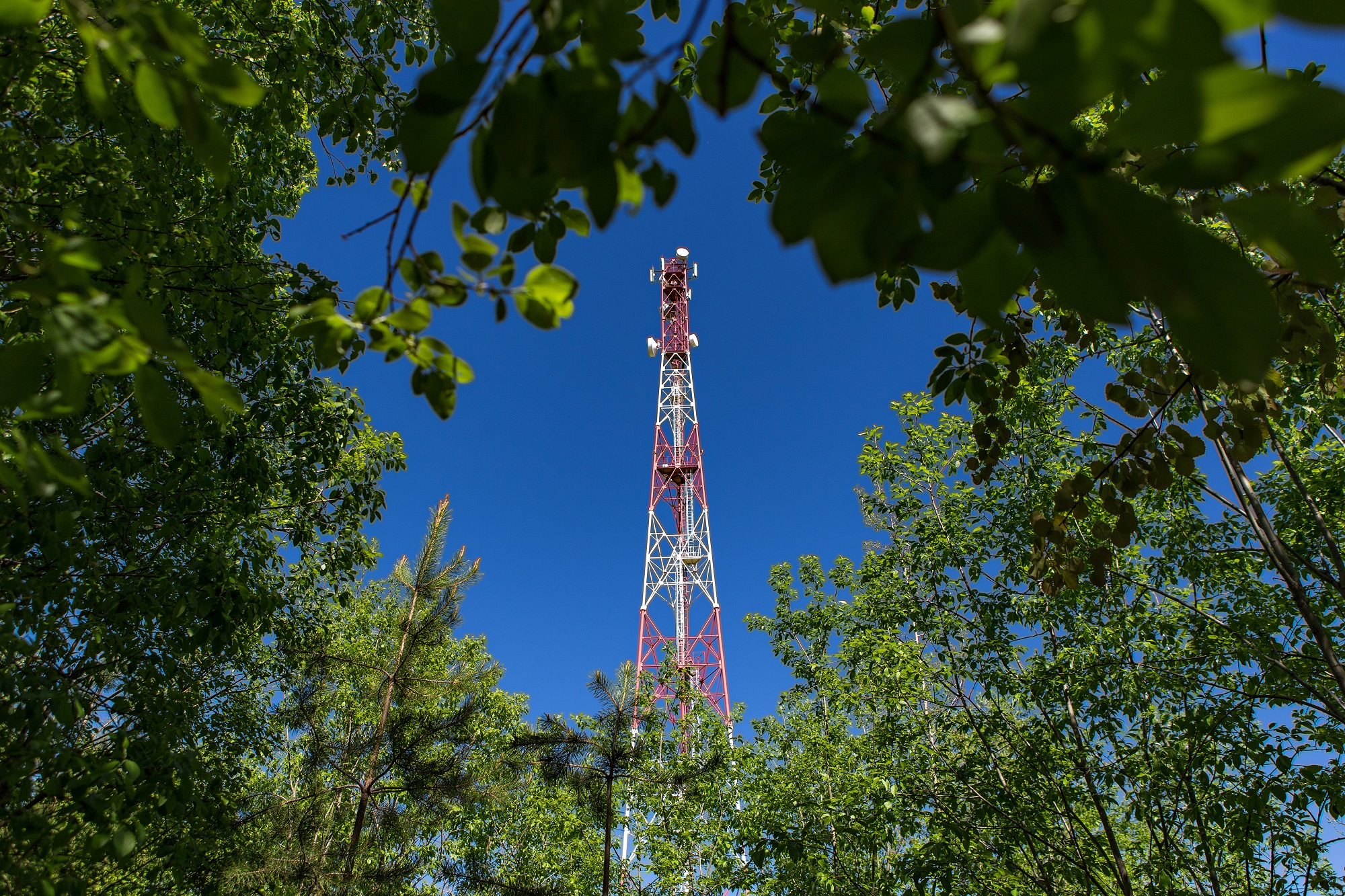 Big Data МегаФона помогла ускорить 4G в Кировской области