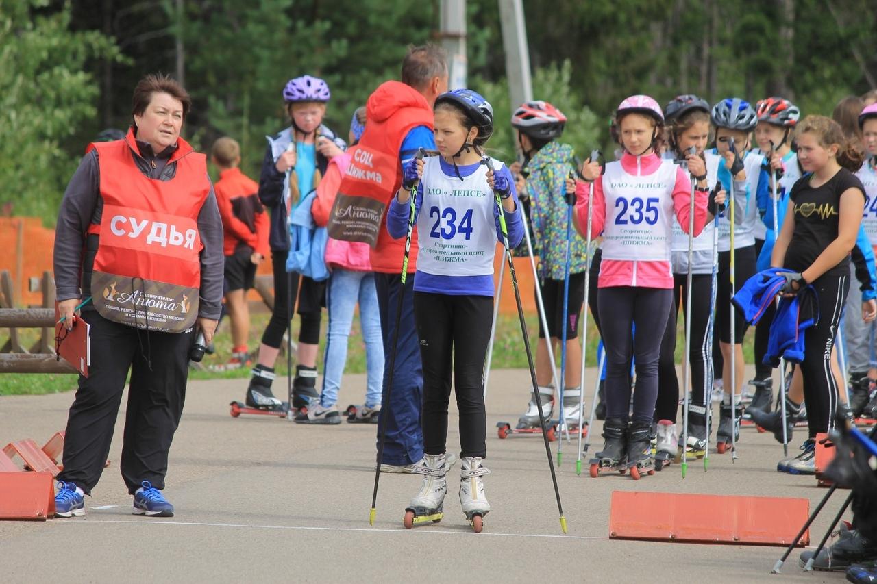 Лыжники выходят на асфальт