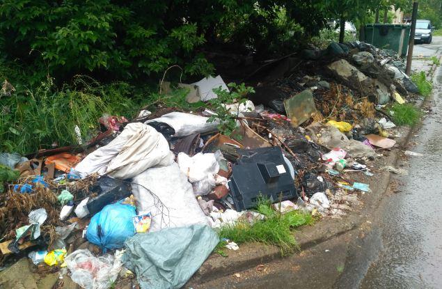 Кировчане жалуются в ОНФ на неудобный график работы мусоровозов