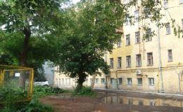 Погода в Кирове. Несет ли нам перемены западный ветер?