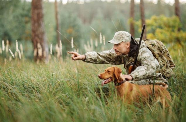 Охрана животного мира, или новости кировской охоты