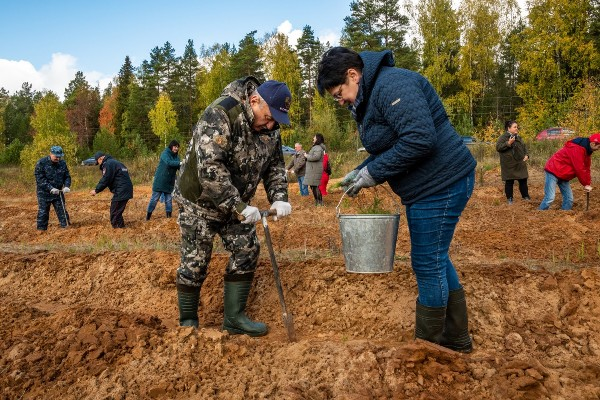 Владимир Быков присоединился к всероссийской акции по сохранению лесов