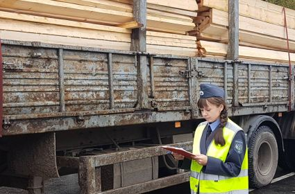 Россельхознадзор и ГИБДД досмотрели почти 2,5 тысячи лесовозов