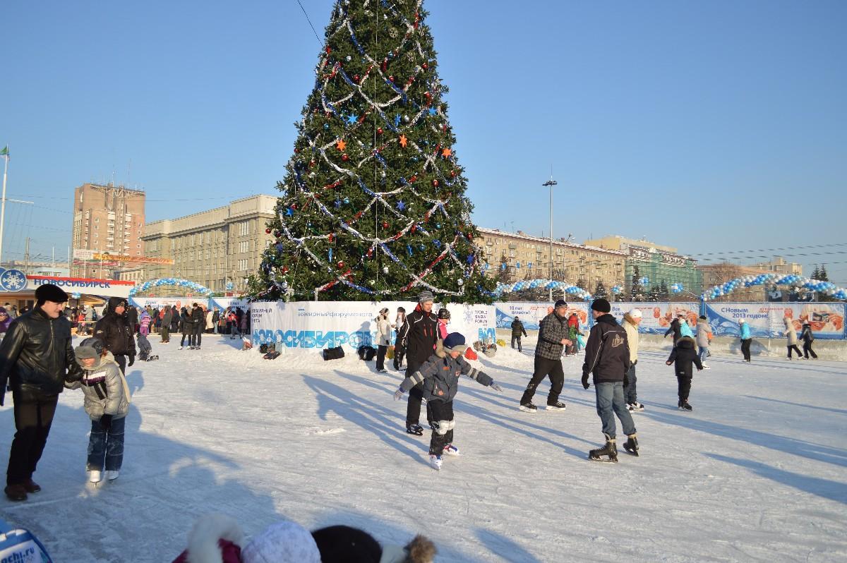 Главную новогоднюю елку Кировской области окружат льдом